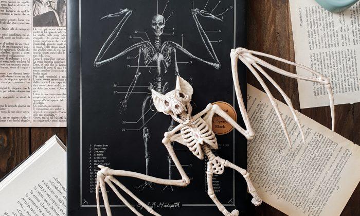 il codice delle creature estinte recensione
